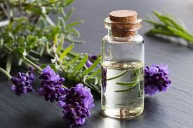 Essential Oils for Your Home